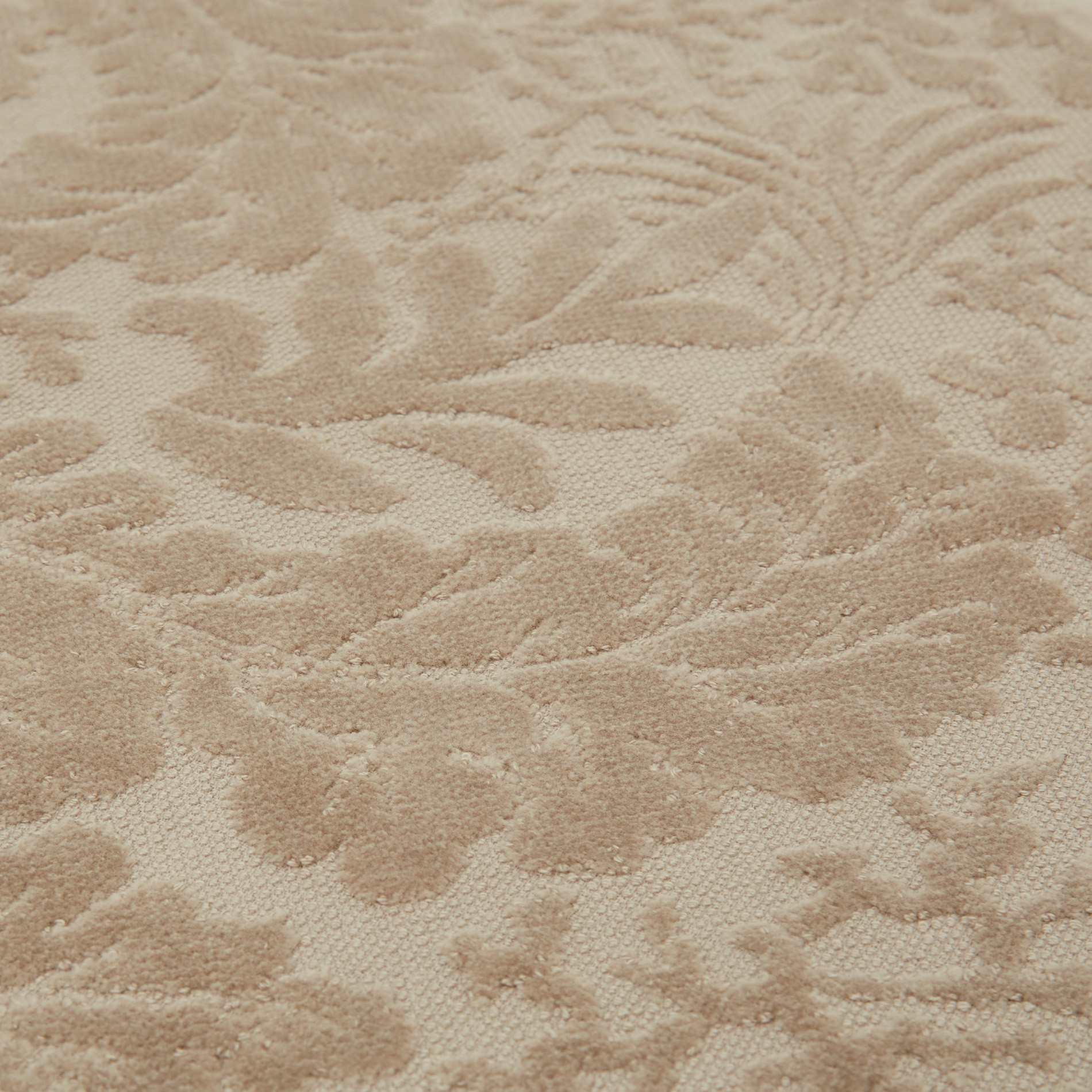 Asciugamano cotone velour motivo coralli, Beige, large image number 2