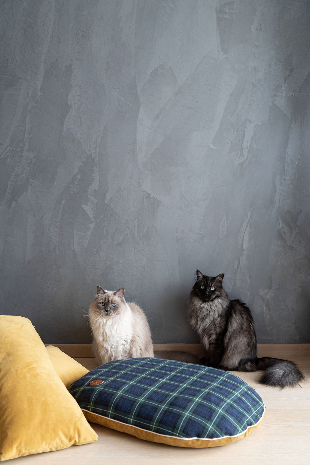 Cuscino cuccia tessuto tartan e velluto, Blu, large image number 3