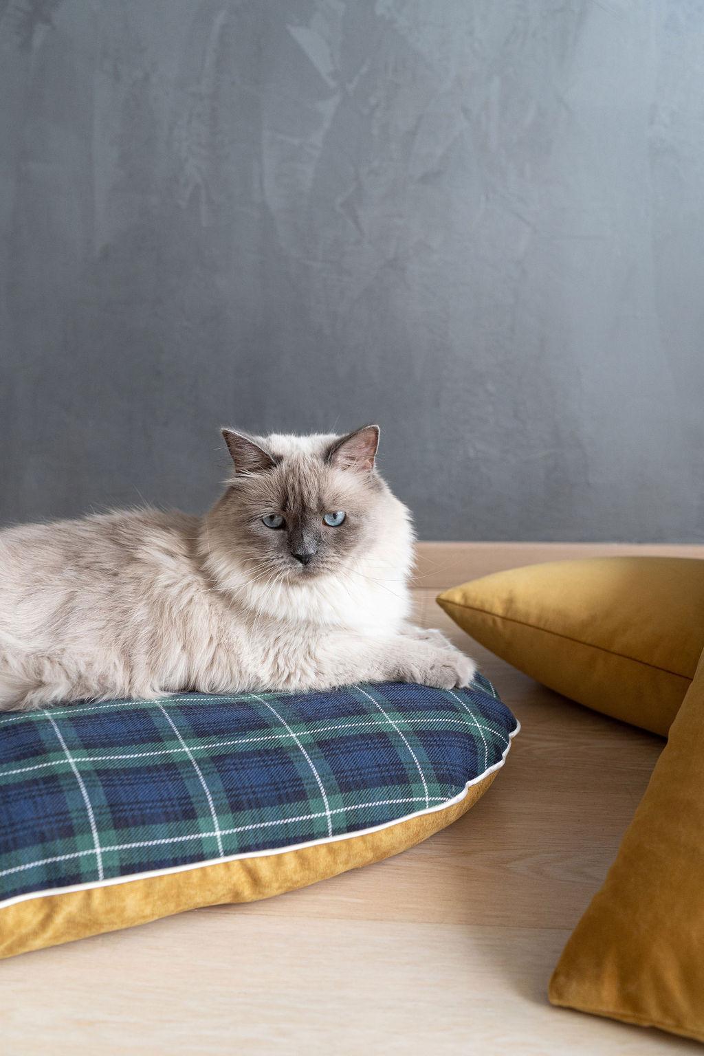 Cuscino cuccia tessuto tartan e velluto, Blu, large image number 4