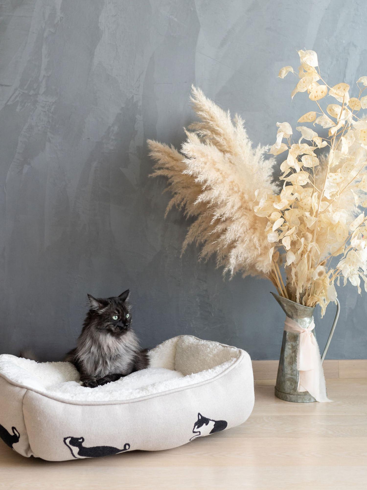 Cuccia gatto in cotone e pelo sherpa, Beige chiaro, large image number 0