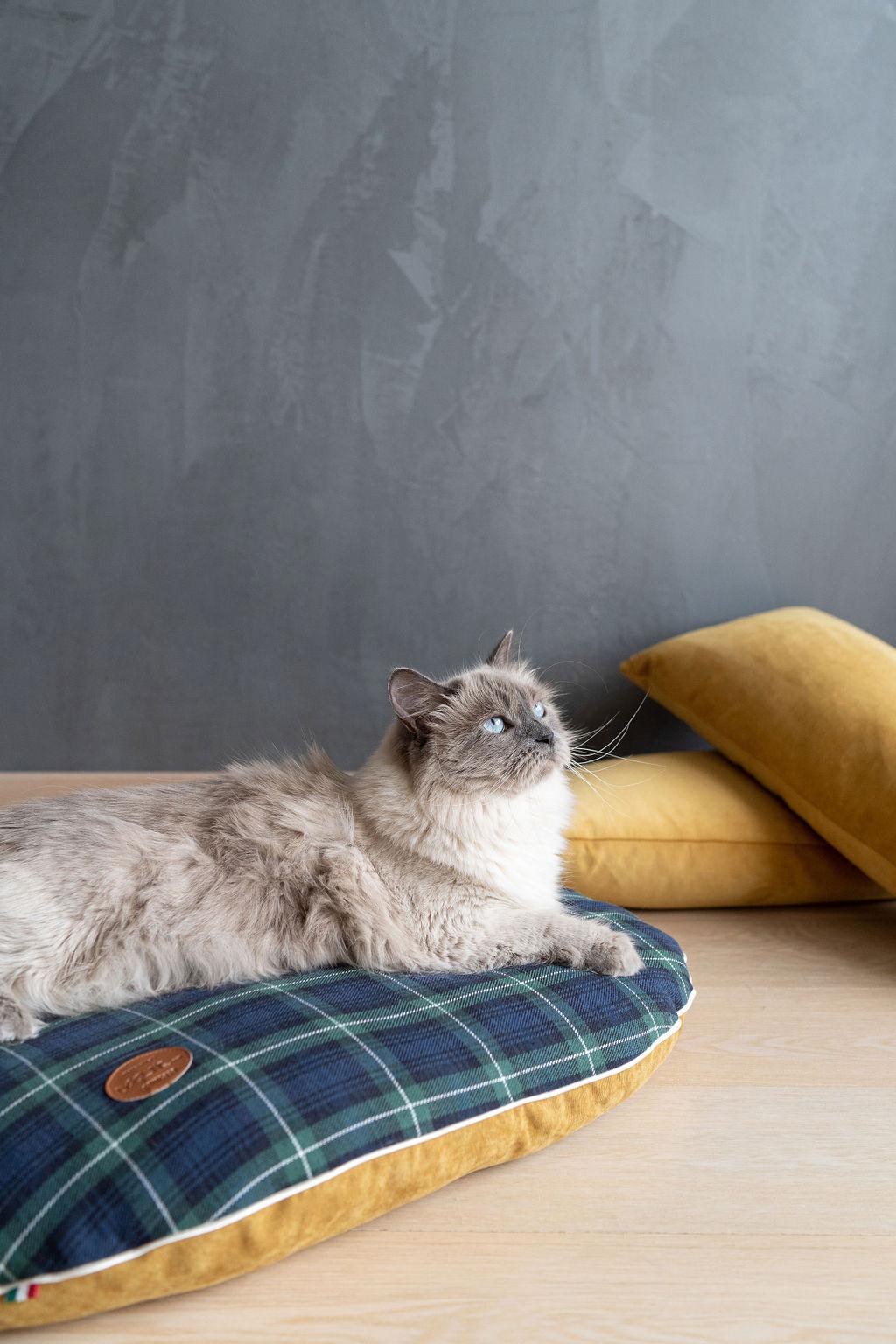 Cuscino cuccia tessuto tartan e velluto, Blu, large image number 2